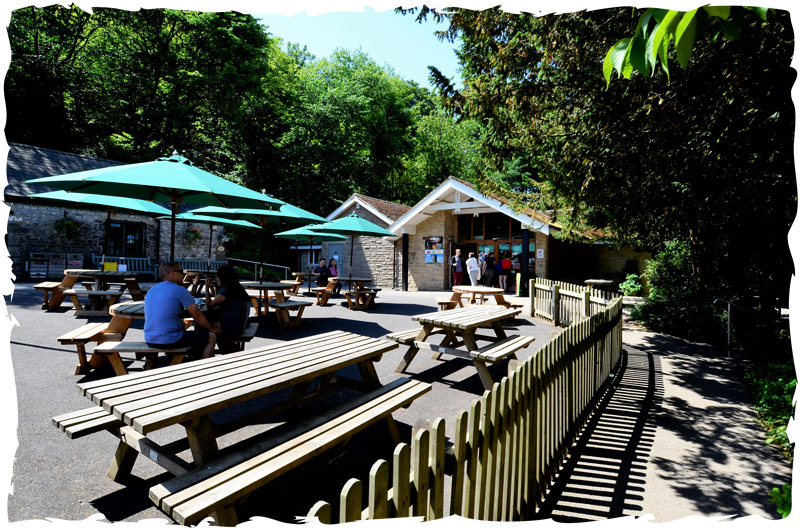 Poole's Cavern & Buxton Country park Visitor Centre